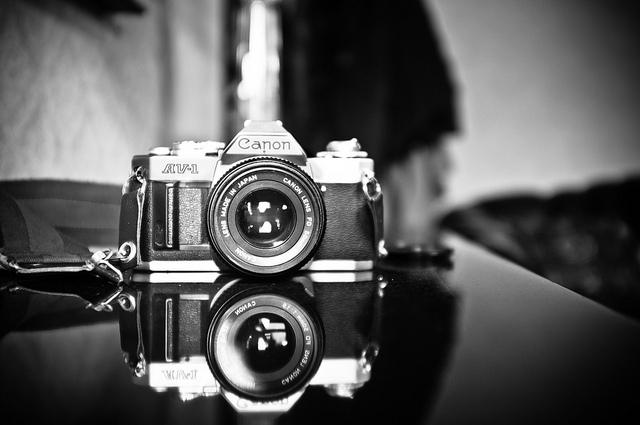 1er concurso de fotografía